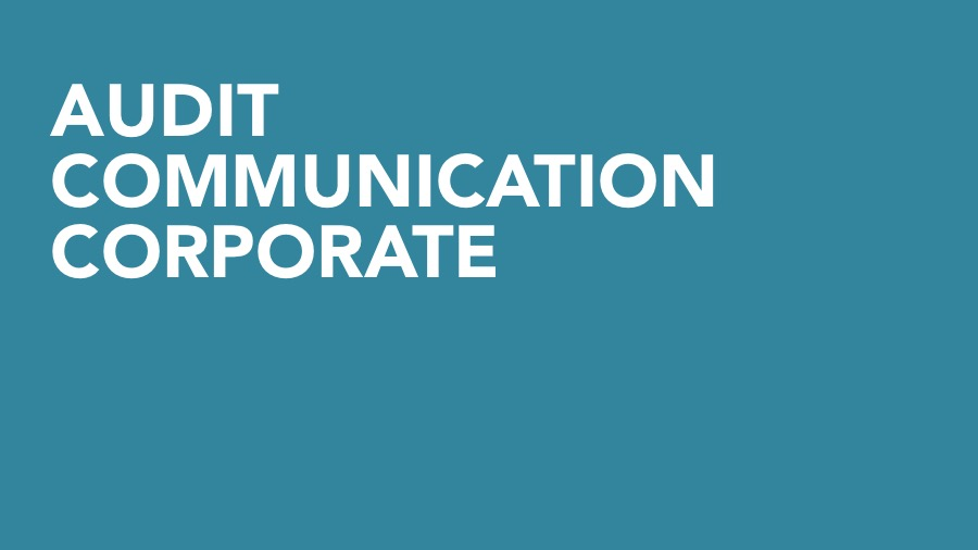 audit-de-communication-corporate-big