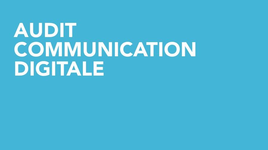 audit-de-communication-digitale-big