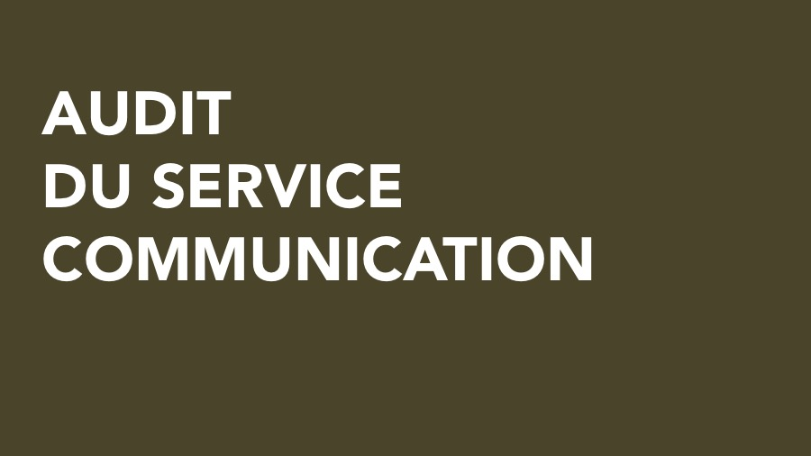 audit-service-communication-big